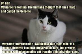 (Ge)Romina Got Adopted!