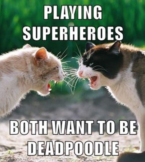 PLAYING SUPERHEROES  BOTH WANT TO BE DEADPOODLE