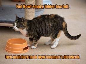 Fud Bowl empty, lidder box full.