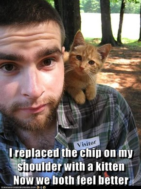 I replaced the chip on my shoulder with a kitten                Now we both feel better