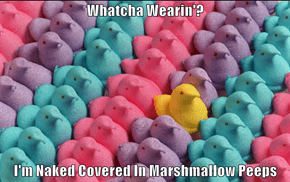 Whatcha Wearin'?  I'm Naked Covered In Marshmallow Peeps