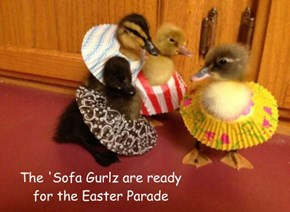 The 'Sofa Gurlz are ready  for the Easter Parade