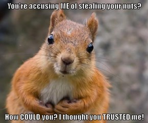 You're accusing ME of stealing your nuts?  How COULD you? I thought you TRUSTED me!