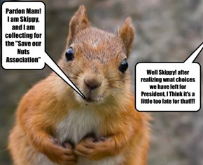 "Pardon Mam! I am Skippy, and I am collecting for the ""Save our Nuts Association"""