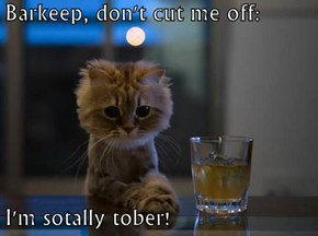 Barkeep, don't cut me off:  I'm sotally tober!