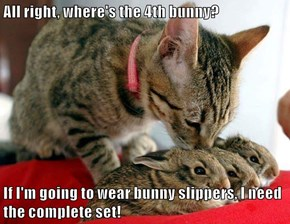 All right, where's the 4th bunny?  If I'm going to wear bunny slippers, I need the complete set!