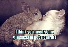 I think you need some glasses,i'm not a carrot !