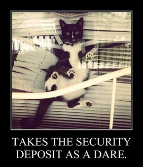 TAKES THE SECURITY DEPOSIT AS A DARE.