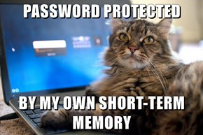 PASSWORD PROTECTED  BY MY OWN SHORT-TERM MEMORY