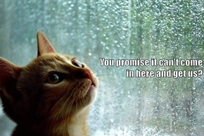 You promise?