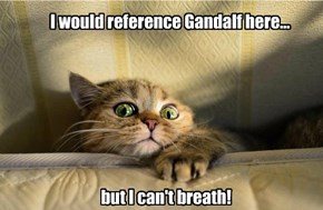 I would reference Gandalf here...