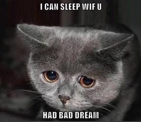 Kitties Are Just Like Little Children
