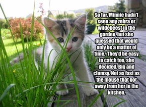 So far, Minnie hadn't seen any zebra or wildebeest in the garden, but she guessed that would only be a matter of time.  They'd be easy to catch too, she decided. Big and clumsy. Not as fast as the mouse that got away from her in the kitchen.
