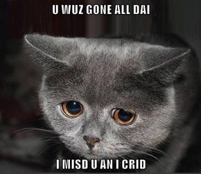 U WUZ GONE ALL DAI  I MISD U AN I CRID