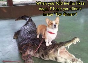 When you told me he likes dogs, I hope you didn't mean 'for dinner'!