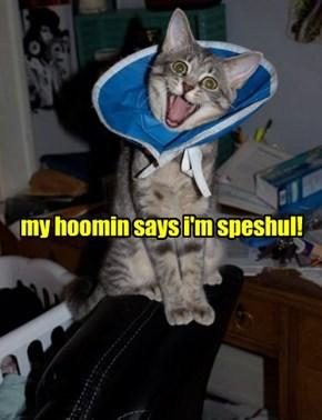 my hoomin says i'm speshul!
