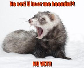 No vet! U heer me hoomin?!  NO VET!!