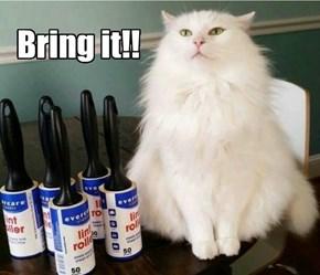 Bring it!!