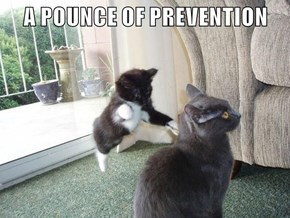 A POUNCE OF PREVENTION