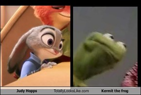 Judy Hopps Totally Looks Like Kermit the frog
