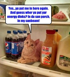 Yu'd be more awake if yu had dat energy dink 1st before putting away da groceries!