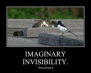 IMAGINARY INVISIBILITY.