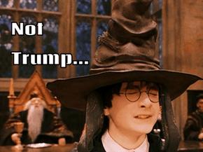 Not Trump