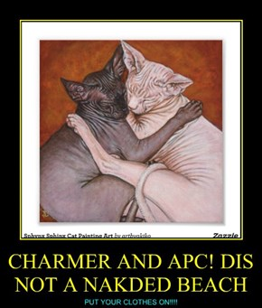 CHARMER AND APC! DIS NOT A NAKDED BEACH