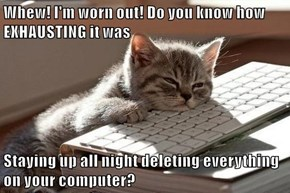 Whew! I'm worn out! Do you know how EXHAUSTING it was  Staying up all night deleting everything on your computer?