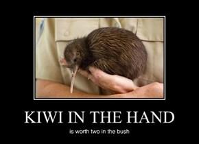 KIWI IN THE HAND