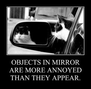 OBJECTS IN MIRROR ARE MORE ANNOYED THAN THEY APPEAR.