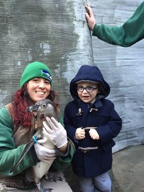 Chris Pratt's Son Finally Got to Meet the Penguin That He Named!