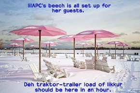 Sun, sno, icee watur, who wouldn' want to come to lilAPC's Beech-Partee.  Oh did I menshun deh likkur 'n brownies?