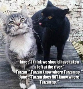 "Jane :"" I think we should have taken  a left at the river.""  Tarzan :"" Tarzan know where Tarzan go. "" Jane : ""Tarzan does NOT know where Tarzan go. """