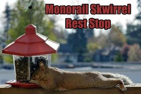 Monorail Skwirrel Rest Stop