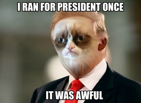 Trumpy Cat Goes to Washington