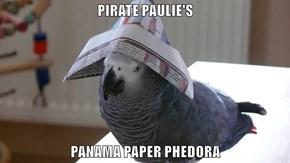 PIRATE PAULIE'S  PANAMA PAPER PHEDORA
