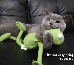 It's not easy being squeezed                                                                              .