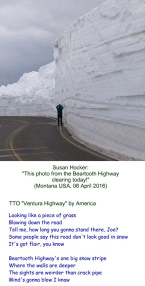 """Beartooth Highway"" (TTO ""Ventura Highway"" by America)"
