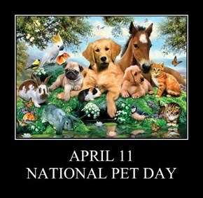 APRIL 11 NATIONAL PET DAY