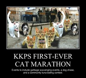 KKPS FIRST-EVER  CAT MARATHON