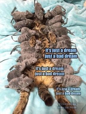 it's just a dream just a bad dream