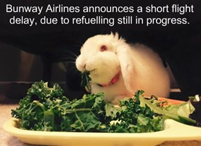 Bunway Airlines announces a short flight delay, due to refuelling still in progress.