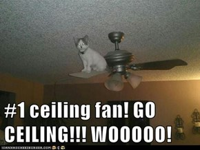 #1 ceiling fan! GO CEILING!!! WOOOOO!