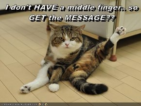 I don't HAVE a middle finger.. so GET the MESSAGE??