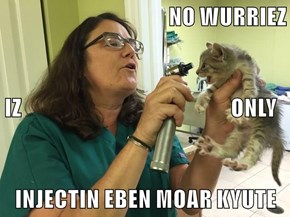 NO WURRIEZ IZ                                                  ONLY INJECTIN EBEN MOAR KYUTE