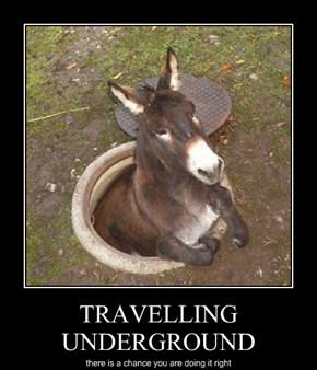 TRAVELLING UNDERGROUND