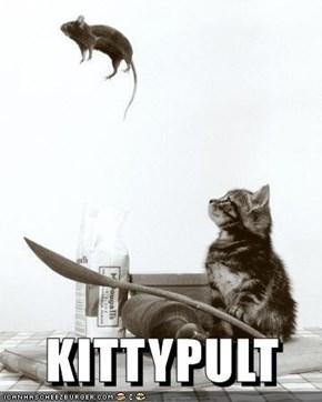 KITTYPULT