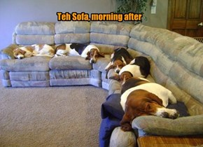 They Won't Remember Much About It, But Trust Me, The Comfy Sofa Girls Had A GREAT Party!