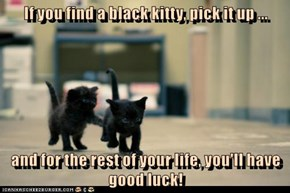 Don't Be Stupidstitious: Black Cats Are GOOD Luck!